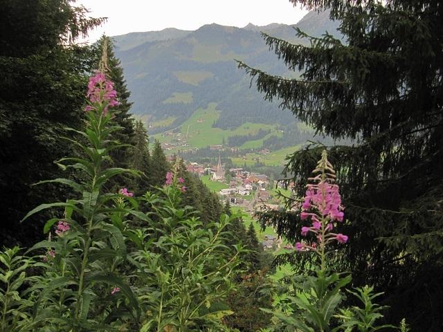 Mittelberg - Vue depuis le chemin panoramique