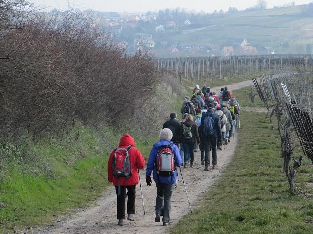 Du Caploen vers Traenheim