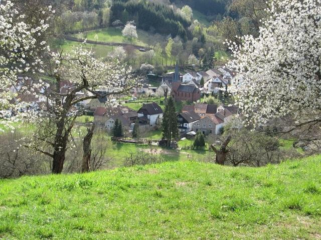 Sur le retour vers Dernach