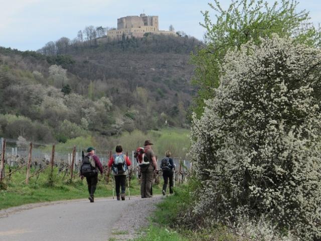 Vers Hambacher Schloss