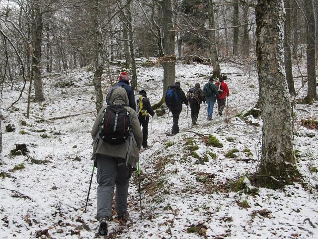 En forêt du Hahnenberg