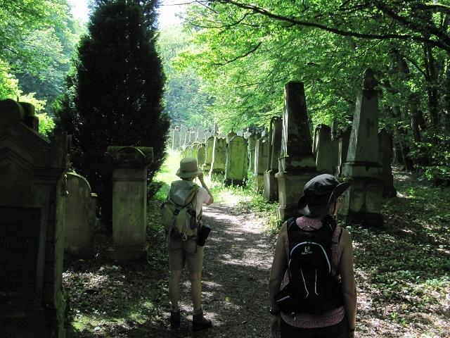 Cimetière juif dans la forêt du Tannenwald
